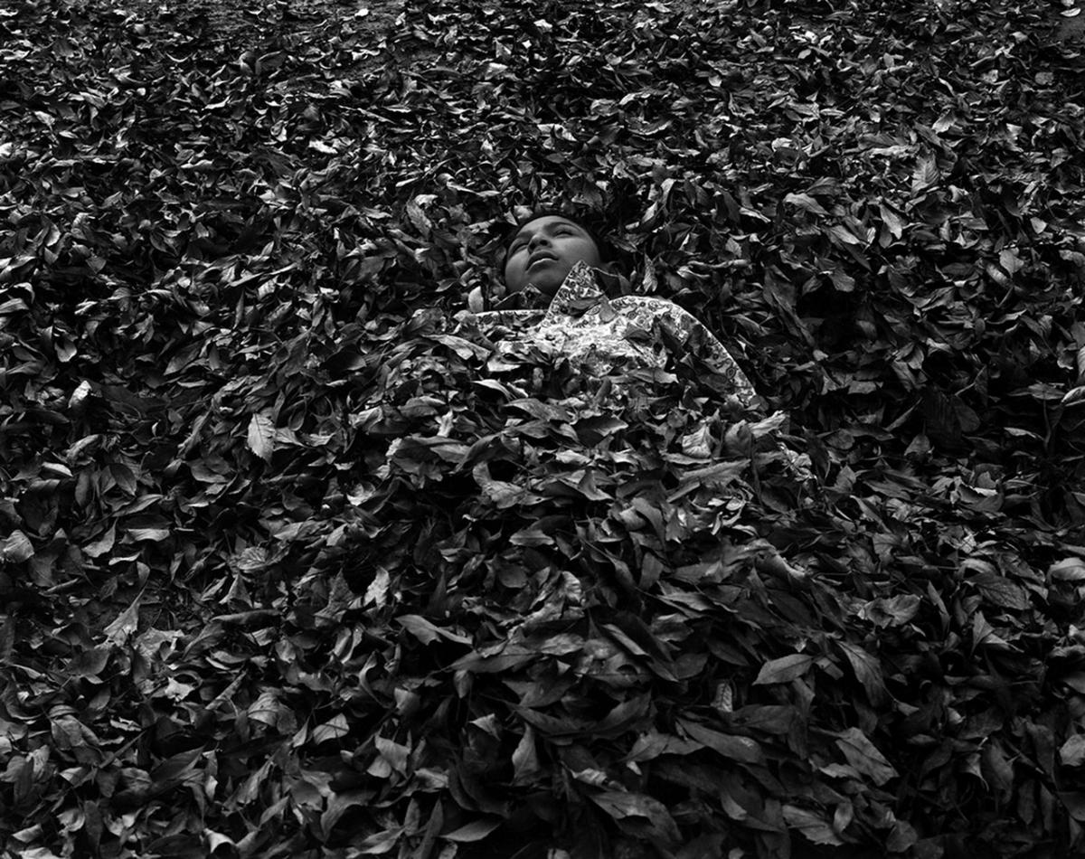 Pilo in leaves, Lampazos de Naranjo, Nuevo León, Mexico, 2016. Photograph by Daniel Ramos, winner of the 2018 Lange-Taylor Prize.