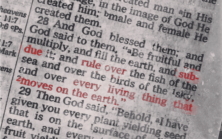 A photo taken of Genesis 1:28 in the Christian Bible with several words glowing red. Photo: John Biewen. Edit: Mara Guevarra.