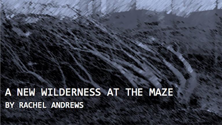 2013 Documentary Essay Prize Winner: Rachel Andrews