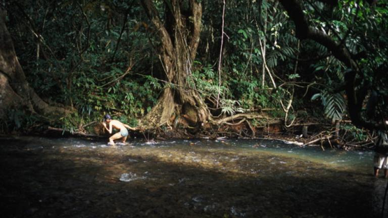 In Tongod, a young man takes the day off in order to fish in a nearby river.   The communities in Tongod claim that diminishing fish stocks are a result of deforestation, surface run-off from plantations, and the encroachment of the outside world.