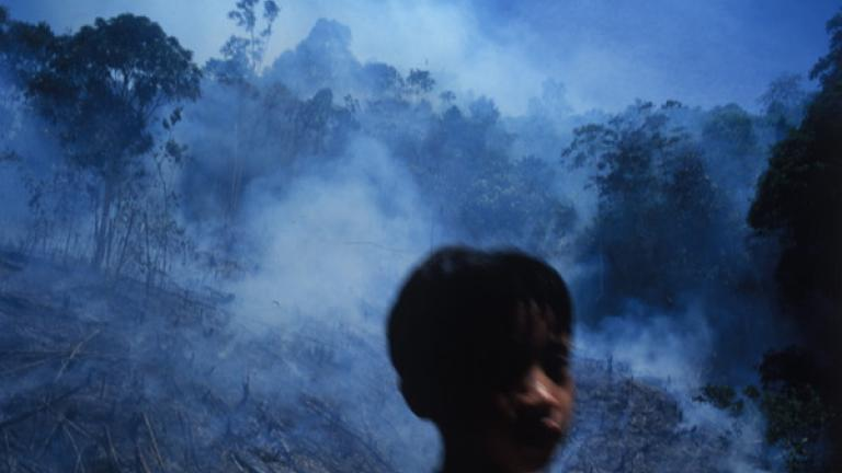In Kampung Terian, boys help to control a fire so that it burns only the field to be used for next year's crops.