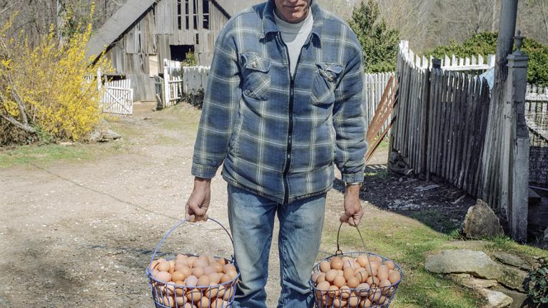 Clarence McAbee carries eggs to the house for washing. March 2006. Photo by Ken Abbott.