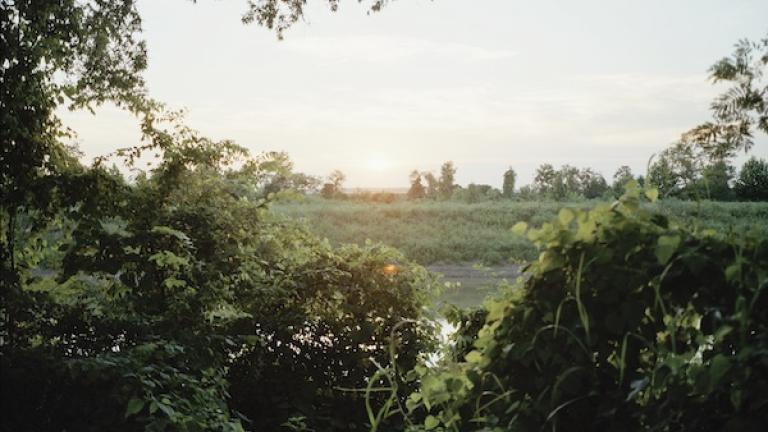 Bank of the Tallahatchie River, Money, Mississippi, 2007