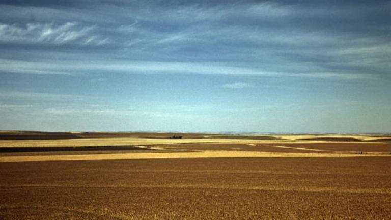 RUSSELL LEE. Wheat farm, Walla Walla, Washington. July 1941.