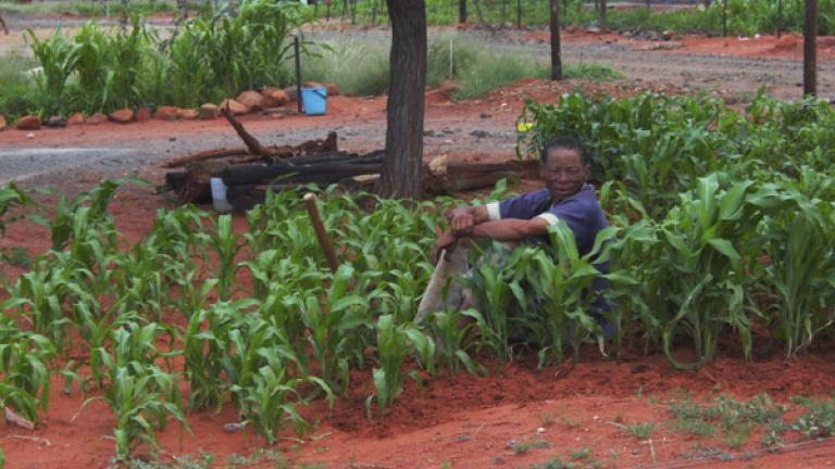 Grandfather resting, Vleifontein, Northern Cape