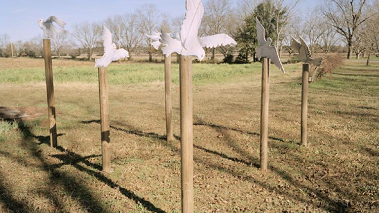 KoinoniaFarms,Americus,Georgia,2007. Photograph by Jessica Ingram.