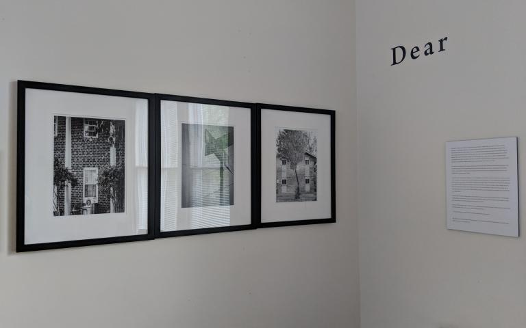 A photo of the exhibit on the walls at CDS
