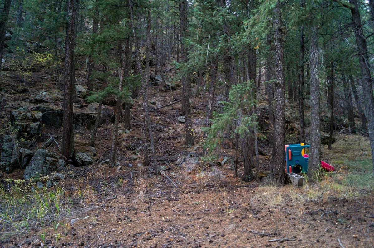 A small playground meant for a toddler lays abandoned amongst trees in a forest.