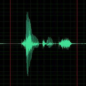 Soundings: Protest|Politics|Dissent (a broadcast audio exhibition)